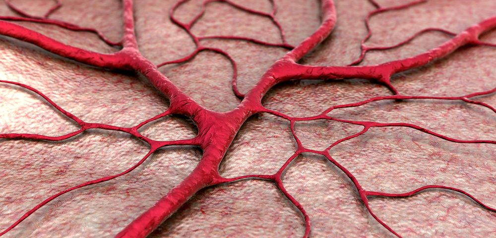 $1.1M Grant Awarded to Study Effects of Aging on New Blood Vessels; May Help Guide Future RA Therapies