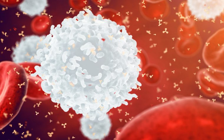 Newly identified T-cell